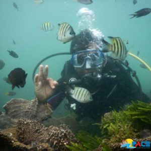 Scuba Diving In Tarkarli