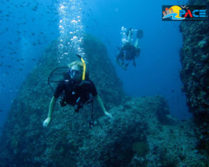 Scuba diving in Malvan